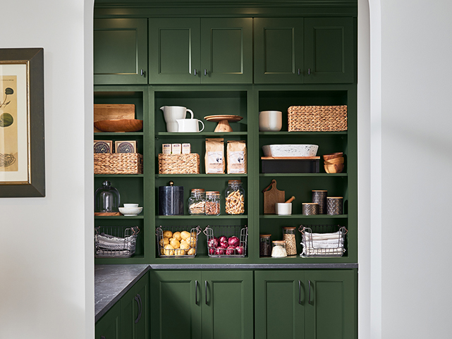 More 5: Pantry Cabinets